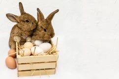 Coelhinho da Páscoa pequeno bonito com a caixa de madeira completa dos ovos da páscoa Foto de Stock Royalty Free