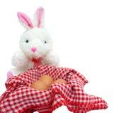 Coelho branco com os ovos no fundo branco Fotos de Stock