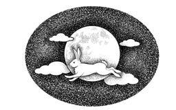 Coelho branco na perspectiva da lua Fotografia de Stock