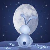 Coelho com a lua oval na noite Fotografia de Stock Royalty Free