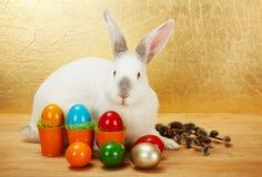 Coelho com ovos da páscoa e catkin imagem de stock royalty free