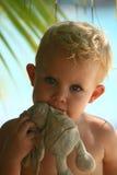 Coelho cortante do bebê Foto de Stock Royalty Free