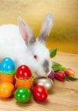 Coelho da Páscoa com ovos coloridos Fotos de Stock Royalty Free