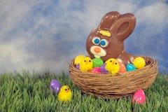 Coelho da Páscoa do chocolate com os pintainhos no ninho fotografia de stock