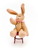 Coelho de coelho de assento Imagens de Stock Royalty Free