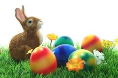 Coelho de Easter Imagens de Stock Royalty Free