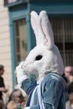Coelho de Easter Foto de Stock