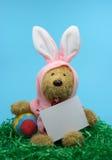 Coelho de Easter com uma nota em branco Fotografia de Stock Royalty Free