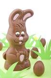 Coelho de Easter do chocolate Fotos de Stock Royalty Free