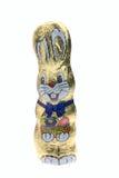 Coelho de Easter do chocolate Fotografia de Stock