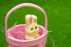 Coelho de Easter na cesta Fotos de Stock