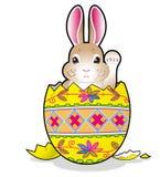 Coelho de Easter no ovo foto de stock royalty free