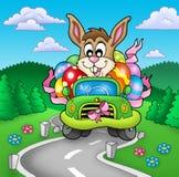 Coelho de Easter que conduz o carro na estrada Imagem de Stock Royalty Free