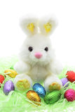 Coelho do brinquedo de Easter e ovos de Easter Fotos de Stock Royalty Free