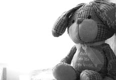 Coelho do brinquedo na fotografia preto e branco Fotografia de Stock Royalty Free
