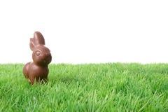 Coelho do chocolate Fotografia de Stock Royalty Free