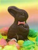 Coelho do chocolate Imagem de Stock