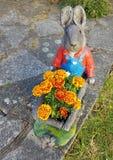 Coelho e flores Fotografia de Stock Royalty Free
