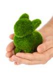 Coelho feito da grama nas mãos Imagem de Stock Royalty Free