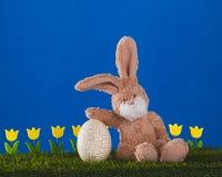 Coelho feliz com ovo grande e as tulipas amarelas na pastagem SK azul imagem de stock royalty free