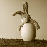 Coelho surpreendido da peluche da Páscoa em um ovo imagem de stock royalty free