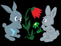 Coelhos ilustração royalty free