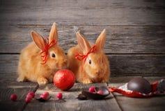 Coelhos com ovos de chocolate Imagem de Stock