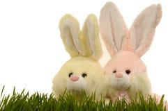 Coelhos de Easter Fotografia de Stock Royalty Free