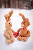 Coelhos no amor com um coração Fotos de Stock Royalty Free