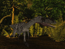 Coelophysis- 3D Dinosaur Royalty Free Stock Images