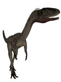 Coelophysis- 3D Dinosaur Stock Photo