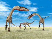 Coelophysis del dinosauro illustrazione vettoriale