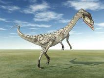 Coelophysis do dinossauro ilustração stock