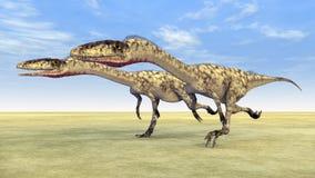 Coelophysis do dinossauro ilustração royalty free