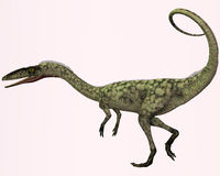 Coelophysis Profile. Coelophysis is the earliest known dinosaur. It was a carnivorous theropod that lived in North America during the Triassic Period Royalty Free Stock Images