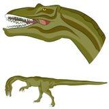 Coelophysisdinosaurus Royalty-vrije Stock Afbeelding