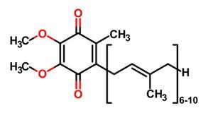 coenzyme τύπος q10 στοκ φωτογραφίες