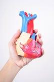 Coeur 2 images libres de droits