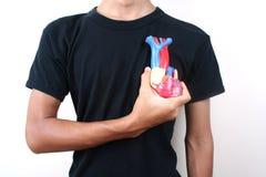 Coeur 3 Photographie stock libre de droits