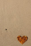 Coeur ambre Photo libre de droits