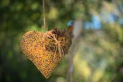 Coeur au vent, fond bois? images stock