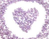 Coeur avec des fleurs de lilas Photos stock