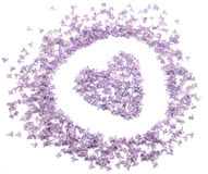 Coeur avec des fleurs de lilas Photographie stock libre de droits