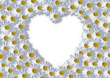 Coeur blanc Photographie stock