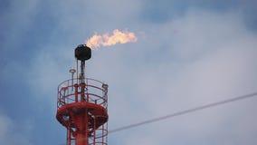 Coeur chaud de plateforme pétrolière de torchage de gaz de tuyau de concept de fabrication haute flamme de brûlure jaune-clair d' banque de vidéos