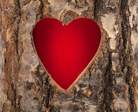 Coeur coupé dans le tronc d'arbre creux Images libres de droits