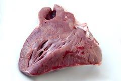 Coeur cru de boeuf - viande images libres de droits