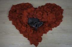 Coeur débloqué Photographie stock libre de droits