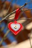 Coeur décoratif de photo sur une branche Images libres de droits
