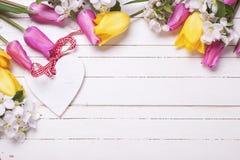 Coeur décoratif, fleurs de pommier et tulipes lumineuses Photos libres de droits